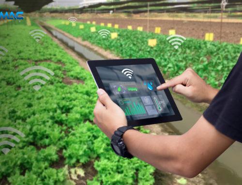 Internet of Thing (IoT) dan Sektor Pertanian