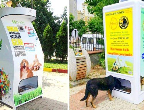 Vending Machine Anjing dan Kucing, Gimana ya Cara Kerjanya