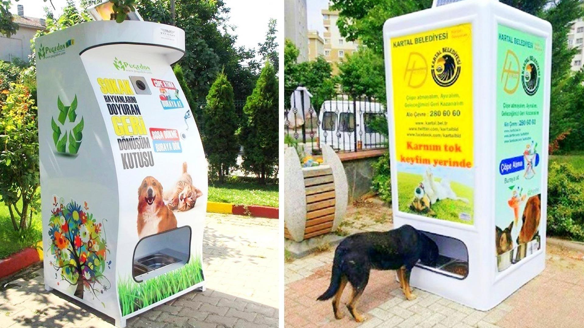 vending machine anjing kucing