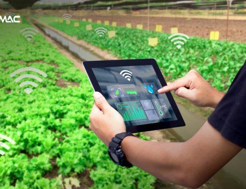 Penerapan IoT untuk Wujudkan Pertanian Digital Bagi Millenials